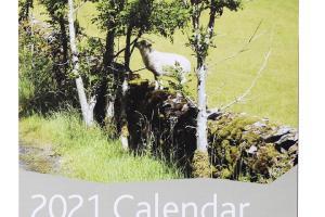 The Dry Stone Walling Association calendar 2021