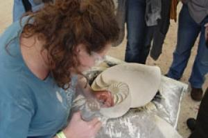 Carrie Horwood of Cat's Eye Carving in  Gloucestershire working on her carving in Warmsworth stone of a cross section through a Nautilus shell.