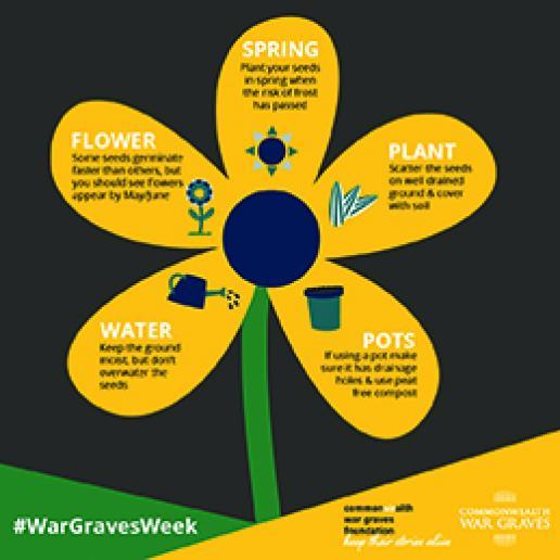 War Graves Week